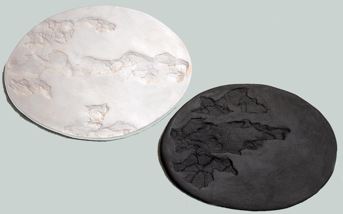 Caterina Aicardi, opere, scultura, natura, art, scultura, terra, argilla, bianco e nero