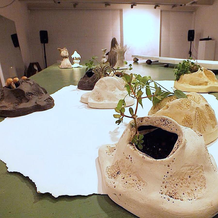Caterina Aicardi, opere, scultura, natura, art, scultura, installazione, paesaggio per semi erranti, piante, verde,