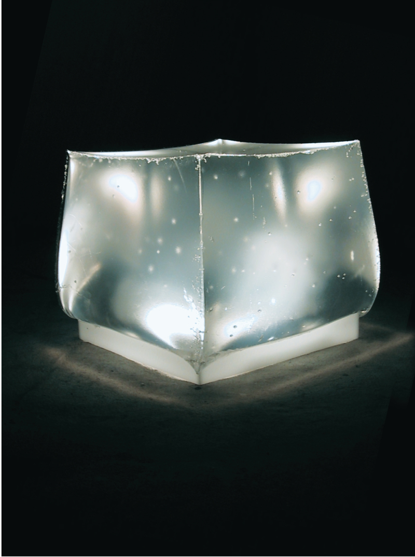 Caterina Aicardi, opere, scultura, natura, art, ninfee, resina, plexiglass, luce, jellyfish